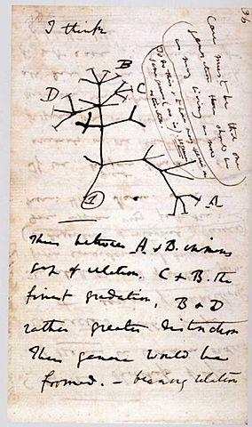Darwin's Tree of Life **