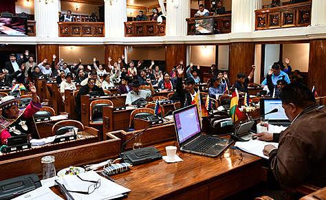 Legislativo sanciona ley de prórroga de mandato de Áñez y legisladores