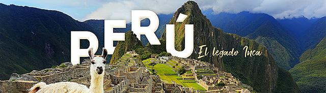 Ley 29.733 (Perú)