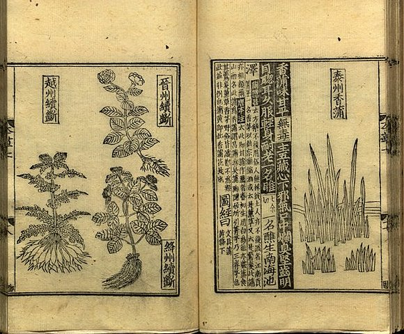 Science in the Tang Dynasty (618–906)