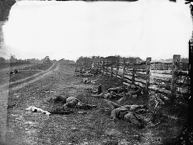 Dead of Antietam