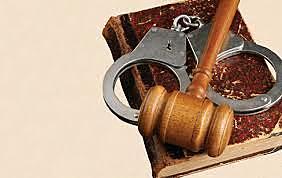 El Derecho Público Subjetivo