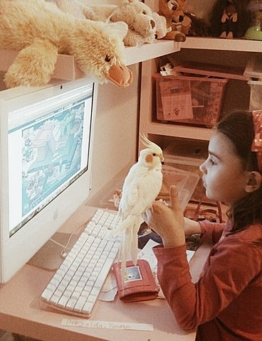 We got a pet bird, Sunny.