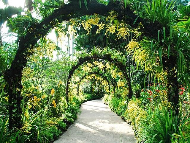 La ecología botánica