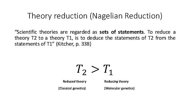 Nagelain models of reduction