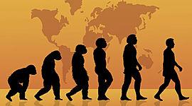 Actividad Integradora 1 - Posturas de la evolución timeline