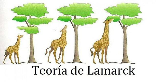 Los tres postulados de Lamarck