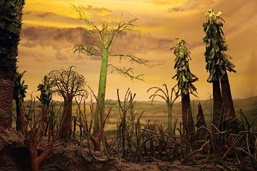 Permian Period & Extinction