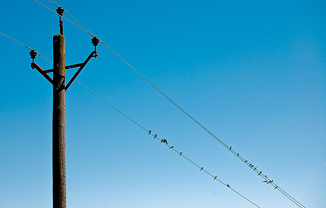 The First Telephone Wire
