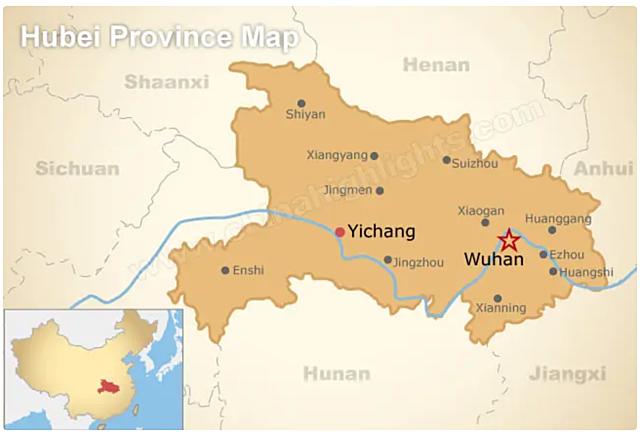 Knowledge: Hubei Report