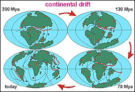 Continent on movement