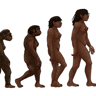 Evolución humana a través de la historia timeline
