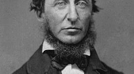 Henry David Thoreau timeline