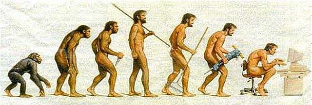 Darwin escribió un primer borrador de la teoría de la evolución.