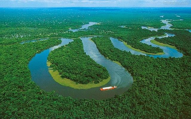 Wallace y su amigo Henry W. Bates se embarcaron rumbo al Amazonas.