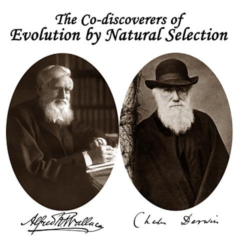 Linnea Society realizó la presentación en sociedad de los trabajos de Darwin y Wallace.