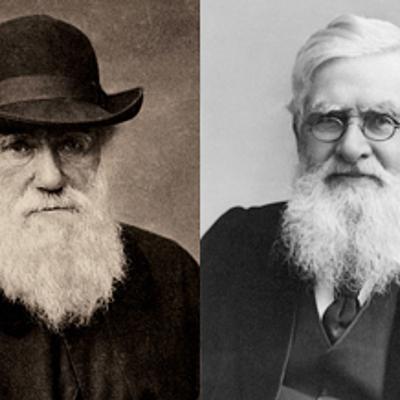 Biografía de Charles Darwin y Alfred Wallace timeline