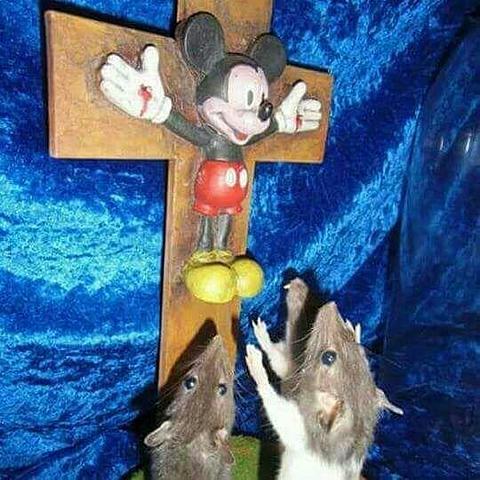 Petit jesus est ne