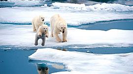Арктическая экспедиция timeline