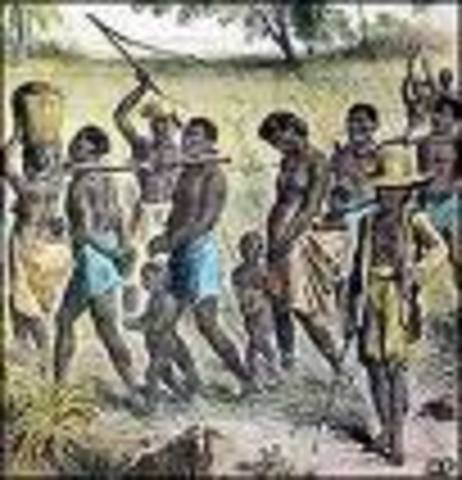 Expansion of Slave Trade in Colonies