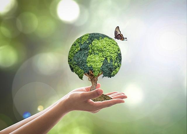 Estudo da Proteção da Natureza no Mundo