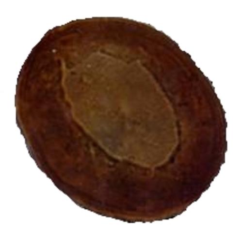 Cryptospores