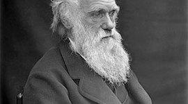 Biografía de Charles Darwin (Diana Pineda Vásquez) timeline