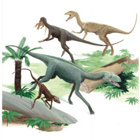 Triassic-Jurassic Extinction