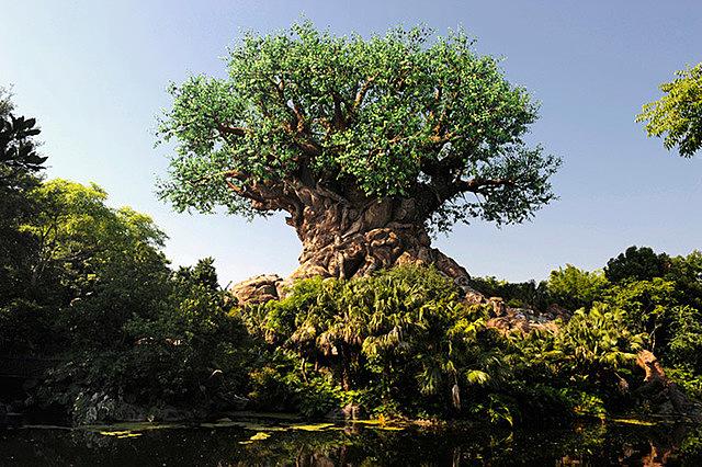 Lucy Mack / Joseph Smith Sr. had the tree of life dream.