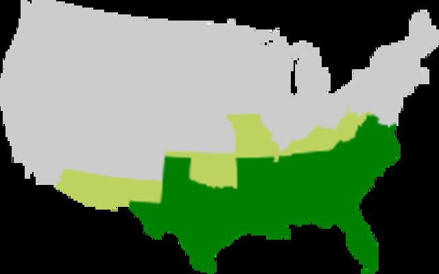 South Carolina's Secession