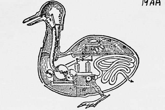 Digesting Duck