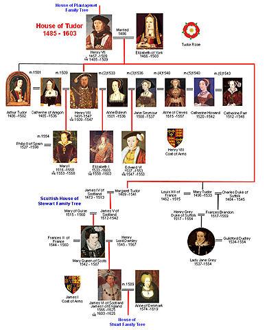 Tudor Dynasty/Family Tree