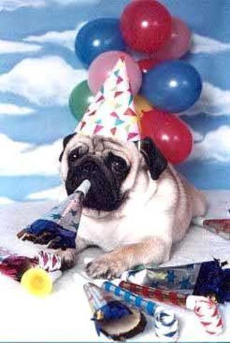 My fist Birthday party