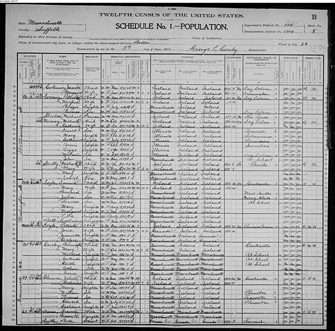 1900 Census Dennis and Patrick Doyle Families