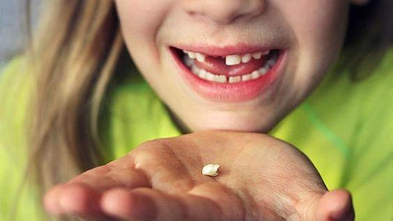 La meva primera dent caiguda