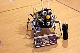 Robot Furby, una mascota mecánica que reacciona ante los cambios del entorno