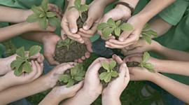 Historia y surgimiento de la Educación Ambiental timeline