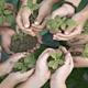 Educacion ambiental medios
