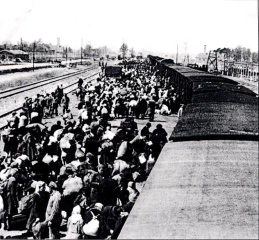 Deportations to Auschwitz extermination camp begins.