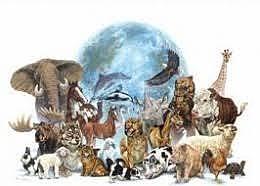 La Ley de especies en peligro