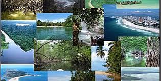 Ley General de Equilibrio Ecológico y Protección al Medio Ambiente (LGEEPA).