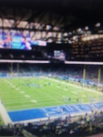 First Lions game