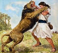 David Slays Lions