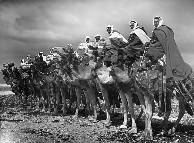Arab Revolt against the Ottoman Empire Commenses
