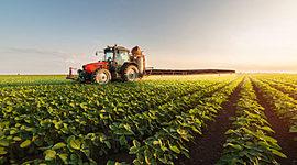 Agricultura timeline