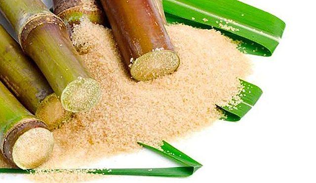 Domestican la caña de azucar y verduras de raiz