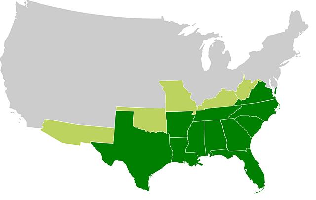 Stati Confederati d'America