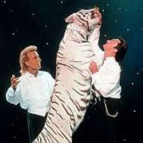 Roy Horn of Siegfried & Roy is attacked by one of the shows tigers