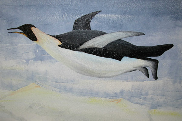 The penguin started to fly