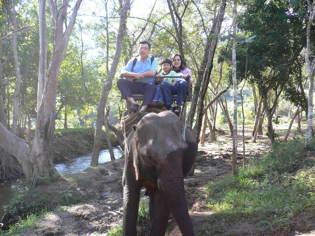 The First Time I Rode An Elephant